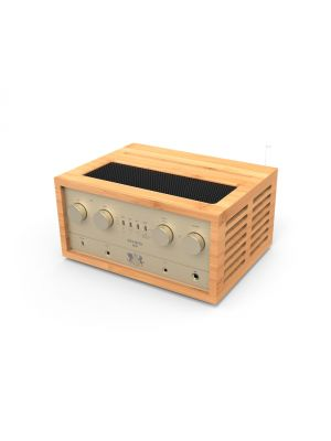 IFI-Audio Retro Stereo 50 full system / Without Speakers