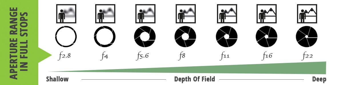 عمق الميدان Depth of field ما هو وما هي العناصر المؤدية لإنتاجه في ...