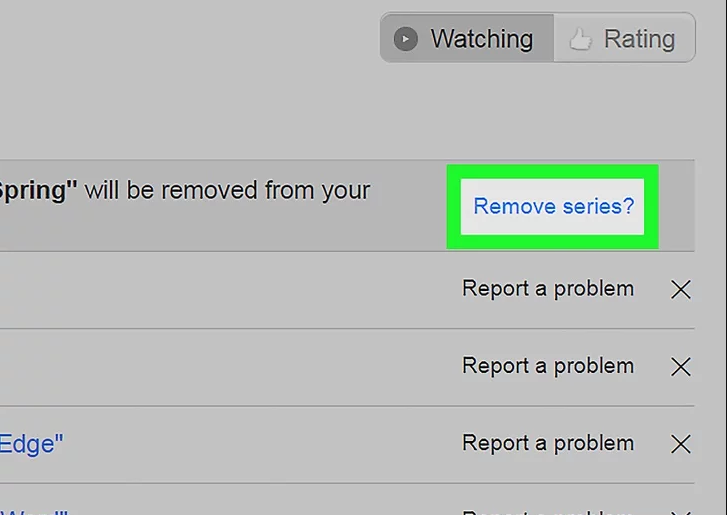 How to remove the Viewing Activity from Netflix?